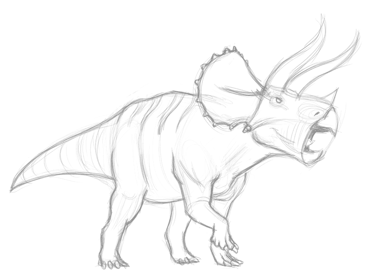 Drawing triceratops - sketch